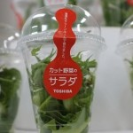 lettuce by toshiba
